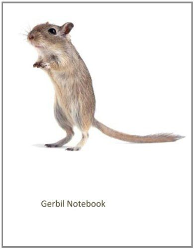 Gerbil Notebook: 100 pages, lined: Reissa Roni: 9781493503070: AmazonSmile: Books
