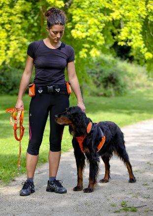 Canisport - zolux.com #dog #zolux #canicross
