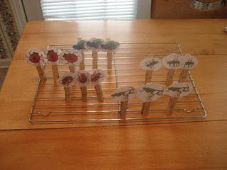 Bugs on clothes pins were great for counting, sliding, flipping backwards and so much more.