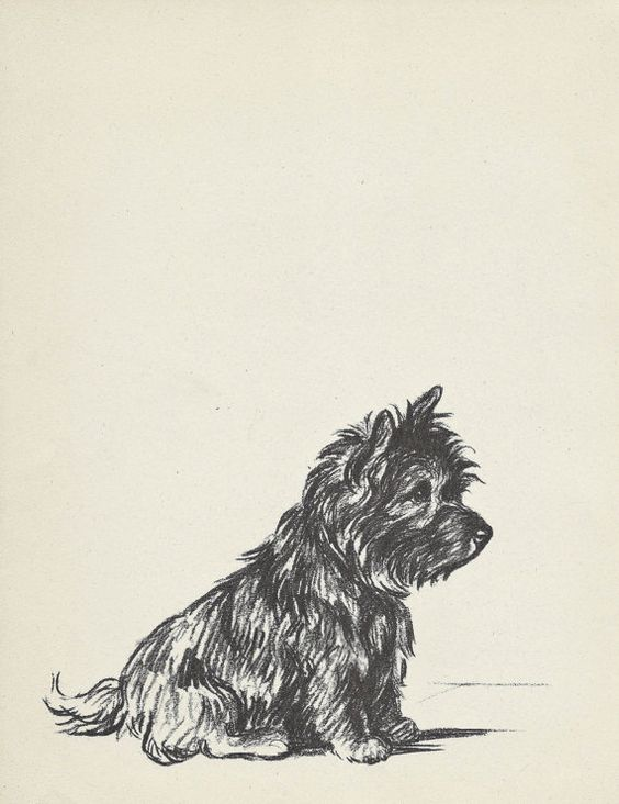 TERRIER 1930s Vintage Dog Print, Lucy Dawson, Wall Decor, Art Illustration to Frame, Book plate, black & white, Cairn terrier