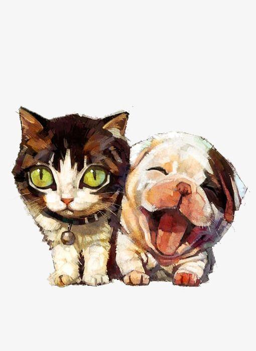 Cat Dog Veterinarian Pet Clinique Veterinaire Cat Transparent Background Png Clipart Tabby Kitten Orange Tabby Kitten Labrador Retriever Puppies