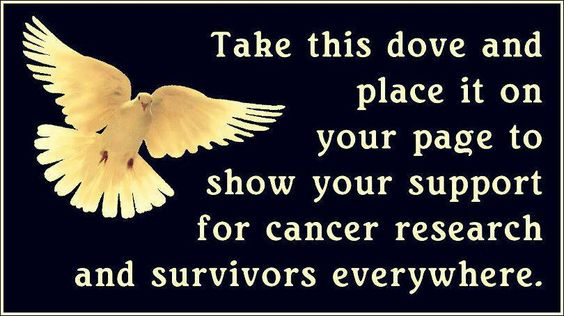 Cancer RESEARCH DOVE
