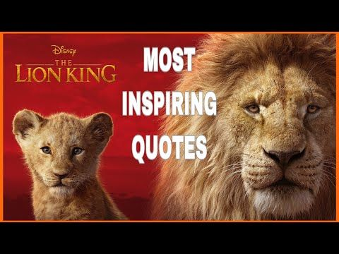 The Lion King Best Life Motivation Quotes Inspirational