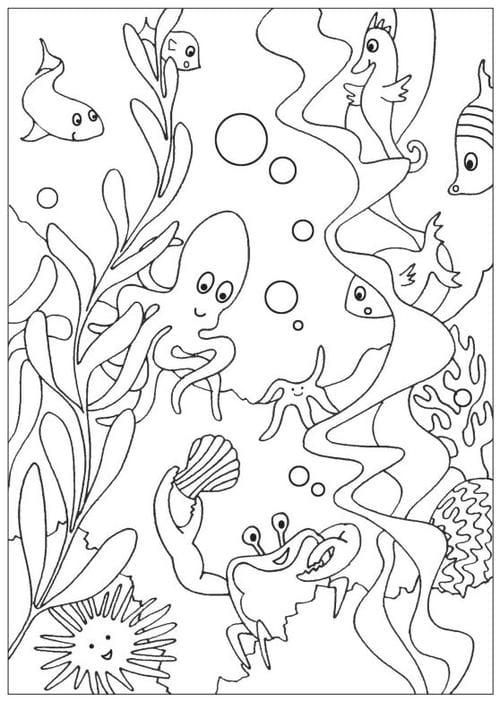 Under The Sea Colouring Sheets Coloriage Animaux Coloriage Coloriage Anniversaire