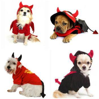 Disfraces De Diablo Para Perros Saca Ideas Para Hacerlos