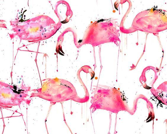 Flamingos Making A Splash by Karissmithdesigns