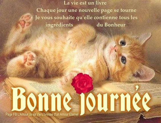La vie est un livre. Chaque jour une nouvelle page se tourne. Je vous souhaite qu'elle contienne tous les ingrédients du bonheur. Bonne Journée