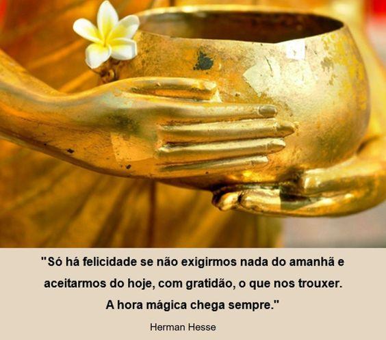 """""""Só há felicidade se não exigirmos nada do amanhã e aceitarmos do hoje, com gratidão, o que nos trouxer. A hora mágica chega sempre."""" Herman Hesse"""