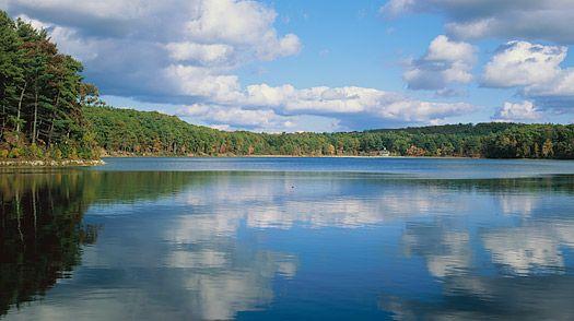 Thoreau's Walden Pond: Pond Concord, Massachusetts Google, Guide Boston, Boston 2013, Guy Decided, Pond Henry, Pond Massachusetts, Henry David Thoreau, David Thoreau S