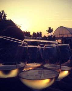 Friday Night Sunset Yoga & Wine