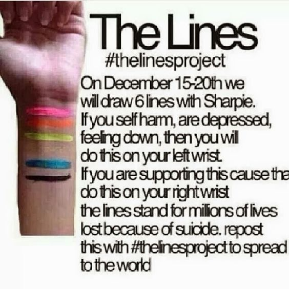 #thelinesproject