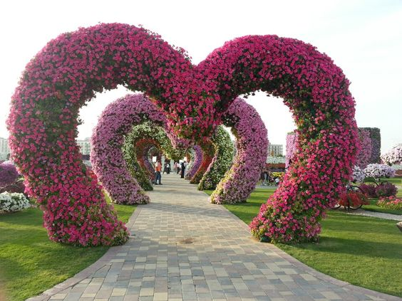 Dubai Miracle Garden in دبي, دبي