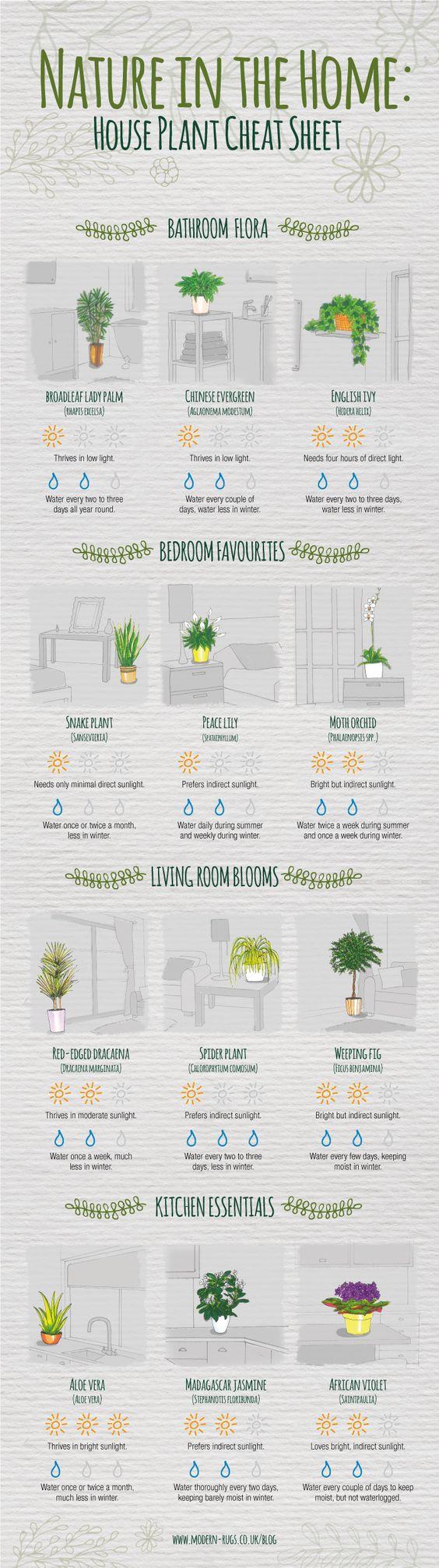 Indoor Plants Cheat Sheet #Infographic #Flower #HomeImprovement:
