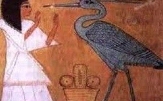 Il mito della creazione è connesso con il simbolo del ben ben e della fenice #egitto #mito #fenice #benben