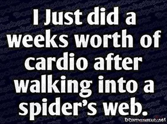 Spider webs will make you do that!