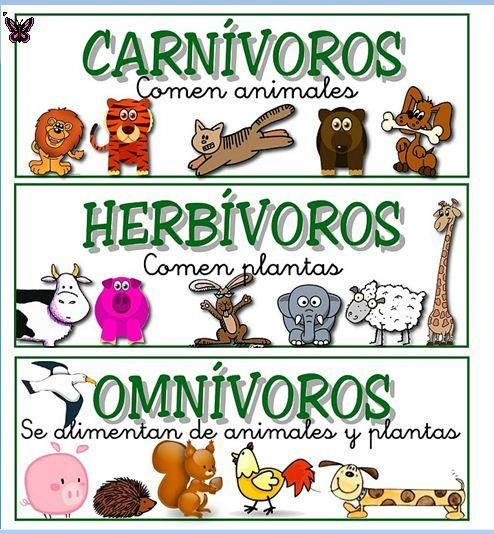 Juego Clasificando Por Carnívoros Herbívoros Y Omnívoros Pearltrees Animales Herbívoros Clasificación De Animales Clasificacion De Seres Vivos