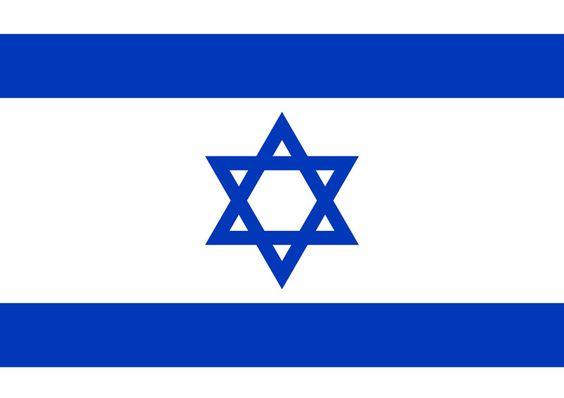 Israël a promis son expertise au Cameroun pour le développement des énergies renouvelables afin de faciliter l'accès à l'énergie électrique