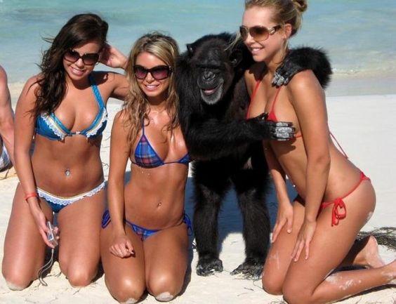 25 Hot Girls with Monkeys