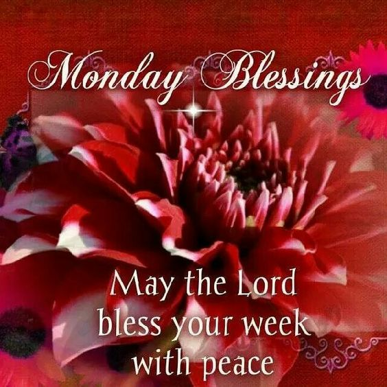 Monday blessings and mondays on pinterest monday blessings m4hsunfo Choice Image
