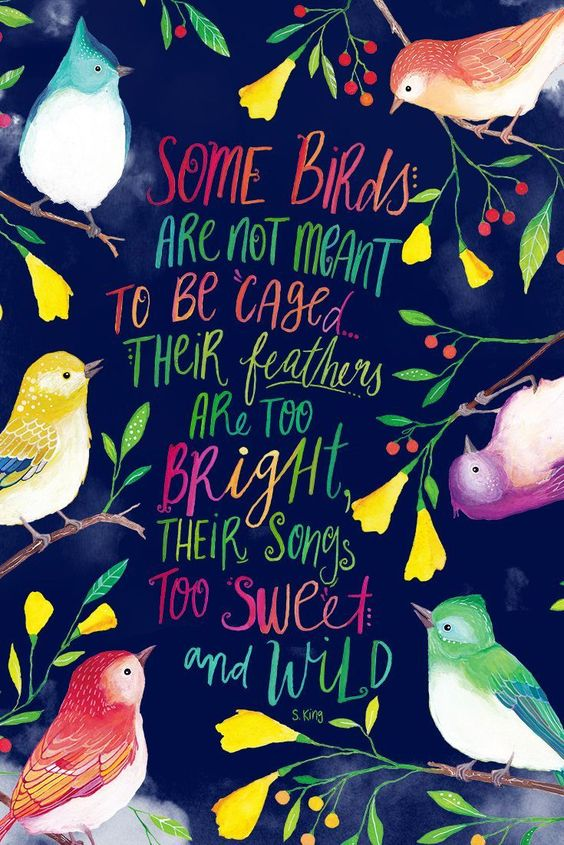 Some birds are not meant to be caged.. their feathers are too bright, their songs to sweet and wild. Hand lettered inspirational quote. Beautiful bird paintings by PRINTSPIRING. Inspirational Wall Art. Boho. Wild and free.: