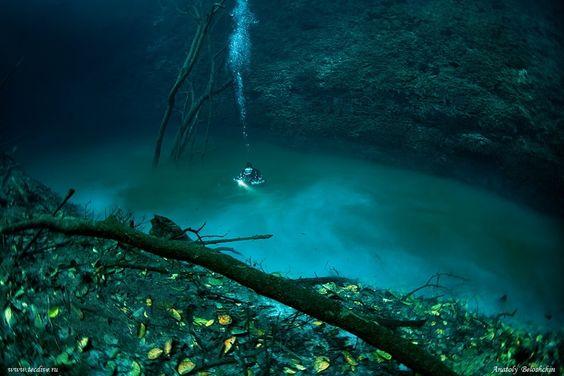 墨西哥猶加敦半島 (Yucatán Peninsula)水下河 Cenote Angelita