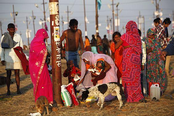 Pilgrims, Maha Kumbh Mela, Allahabad, India
