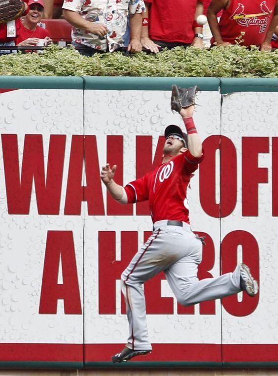 Bryce Harper, de los Nationals de Washington, salta para atrapar una bola en un partido de la Liga estadounidense de béisbol contra los Cardinals de St. Louis.  SARAH CONARD (REUTERS)
