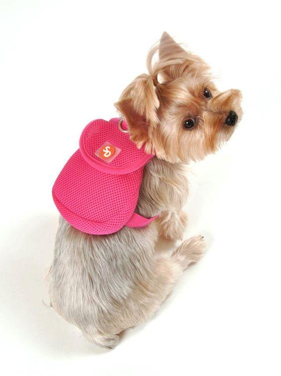 Kuka S World Ropa Y Accesorios Exclusivos Para Perros