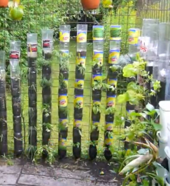 Bottle Tower Gardens Provide Exceptionally Efficient Small Space Growing