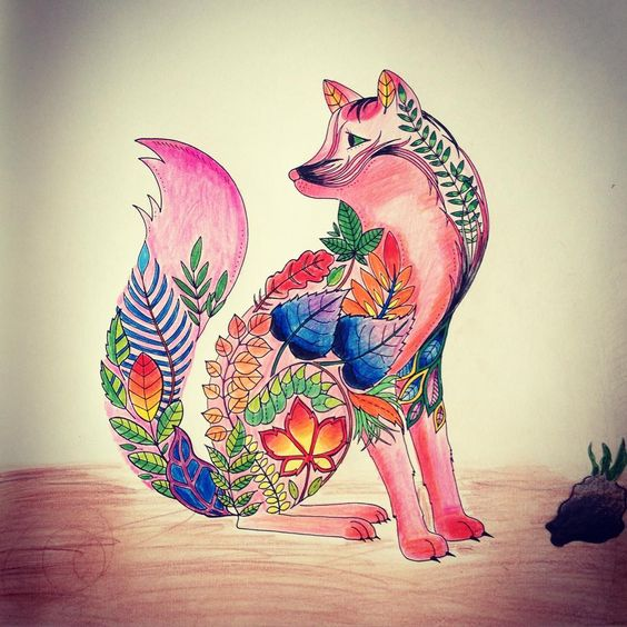 Fox  #johannabasford #enchantedforest #fox #colors #weekend #colorsbook #mik #ikozosseg #iphone4s #iphonography #hungary