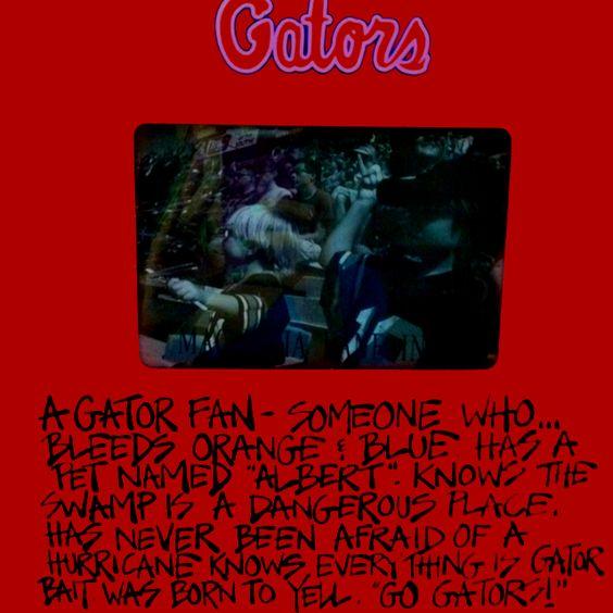 Florida Gator frame