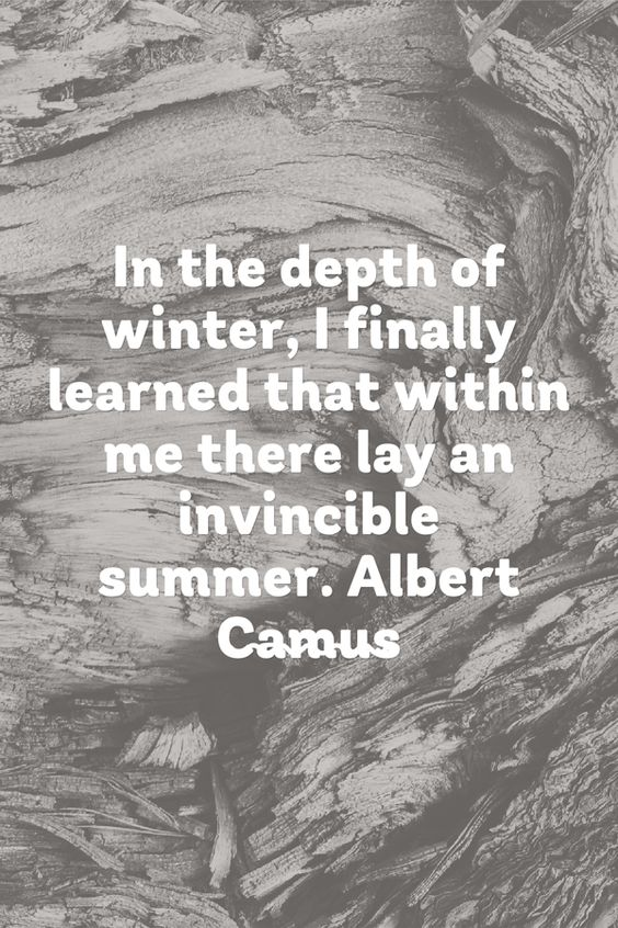 In the depth of winter, I finally learned that within me there lay an invincible summer.Albert Camus