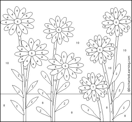 Daisy coloring sheet  color by number