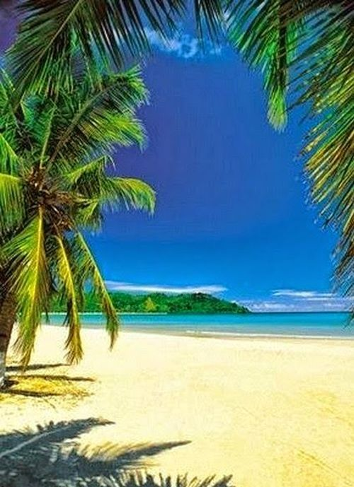 Amazing Beach Views Of Madagascar Nice Place To See This Year