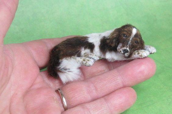 OOAK Realistic Miniature Springer Spaniel Dog 1:12 Dollhouse Igma JParrott