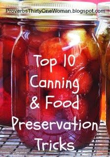 Top 10 Canning and Food Preservation Tricks   Proverbs 31 Woman