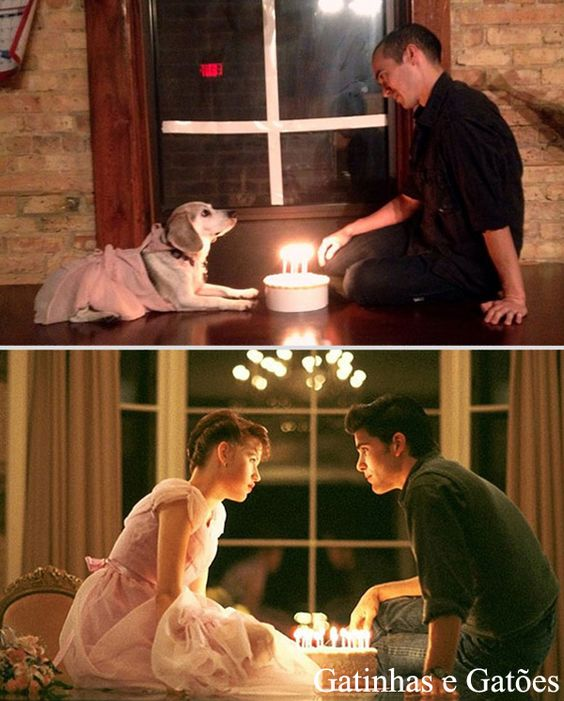 Cinéfilo recria cenas de alguns filmes famosos com seu cão