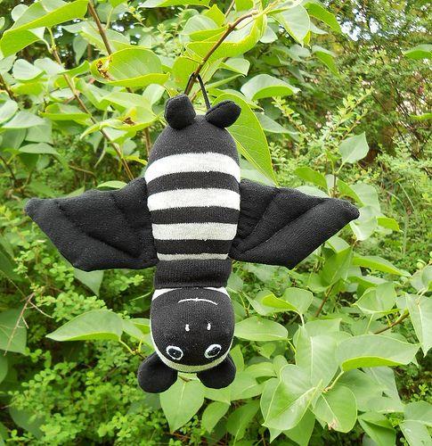 DSCN0373_R   Sock bat - Boris   Dawn Treacher   Flickr