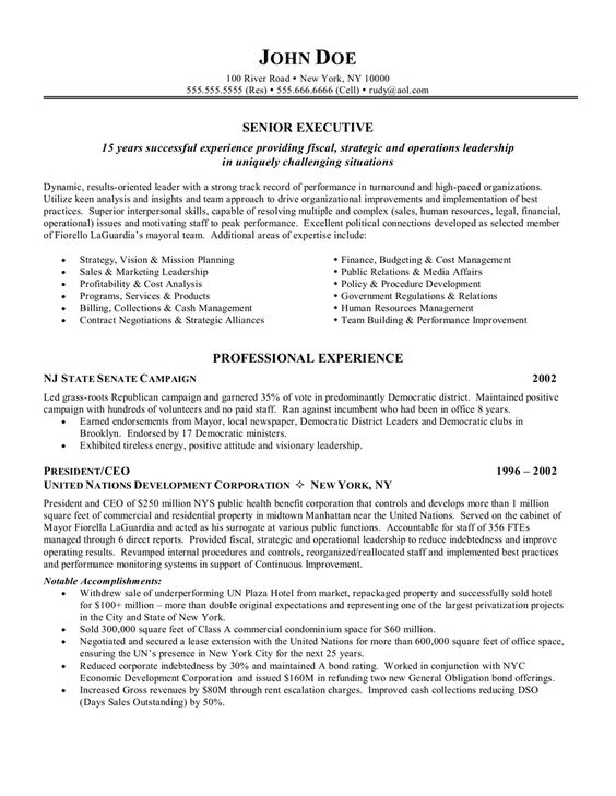 10 Executive Resume Templates by CheckmateResume on Etsy   - ceo resume