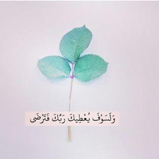 DesertRose///Aayat Bayinat