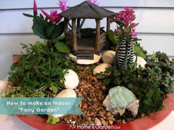 Gardens Indoor fairy gardens and I want on Pinterest