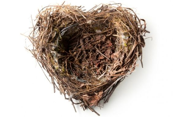 In attesa dell'uovo...  Waiting for the egg ... La sindrome del nido vuoto - Esseredonnaonline