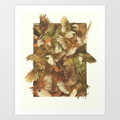 Red-Throated, Black-capped, Spotted, Barred Art Print by Teagan White - $17.00
