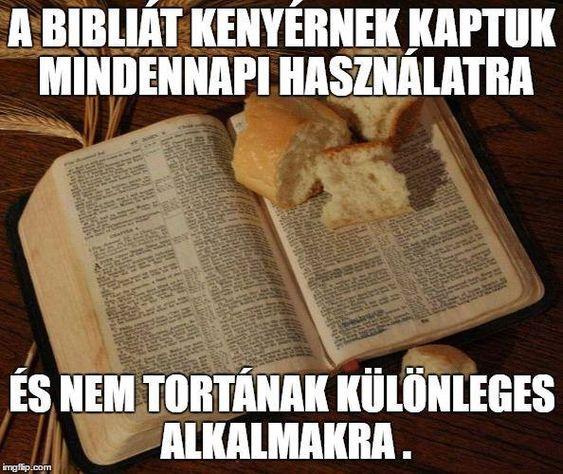 A Bibliát kenyérnek kaptuk mindennapi használatra, és nem tortának különleges alkalmakra.