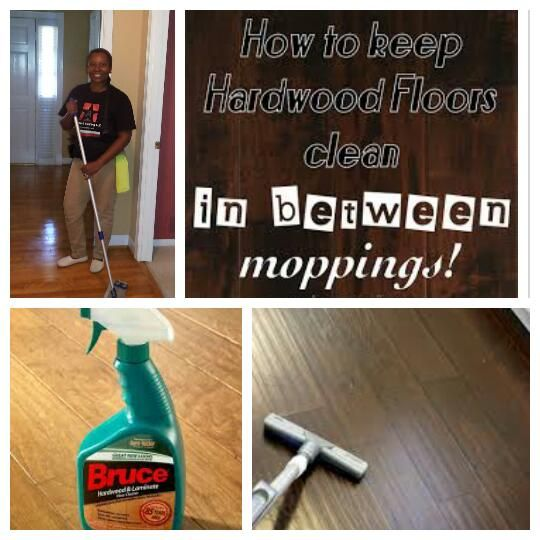 A Starz Cleaning Llc Sandy Springs Ga Carpet And Cleaning Service Clean House Clean Hardwood Floors Cleaning