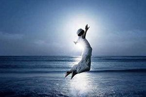 Ser feliz não é ter uma vida perfeita. Mas usar as lágrimas para irrigar a tolerância. Usar as perdas para refinar a paciência. Usar as falhas para esculpir a serenidade. Usar a dor para lapidar o prazer. Usar obstáculos para abrir as janelas da inteligência.