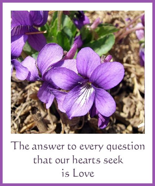 The answer to every question that our hearts seek is Love