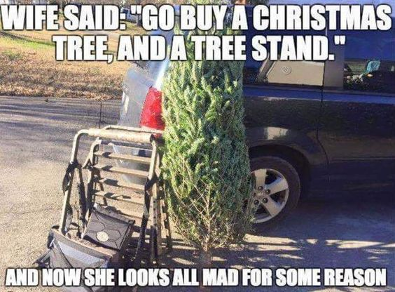 Funny Angry Wife Meme : Trees a tree and christmas on pinterest
