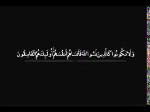 سورة الحشر ايات قرانية قصيره Youtube Youtube Islam Quran Quran