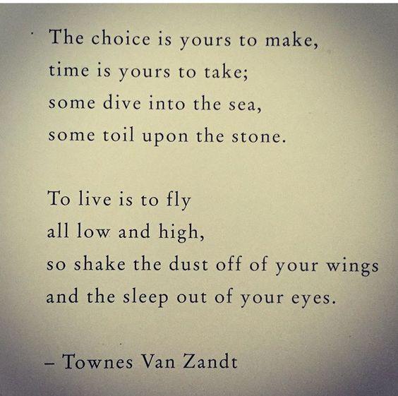 Townes Van Zandt •: